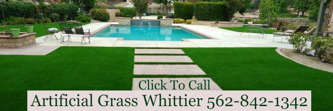 This is a photo of artificial turf installed in a back yard to enhance the look of the pool and landscape